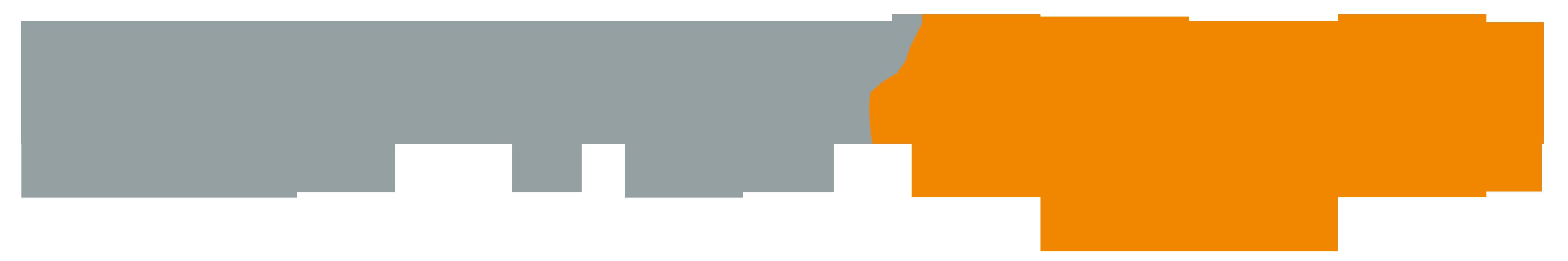 logo_server-eye